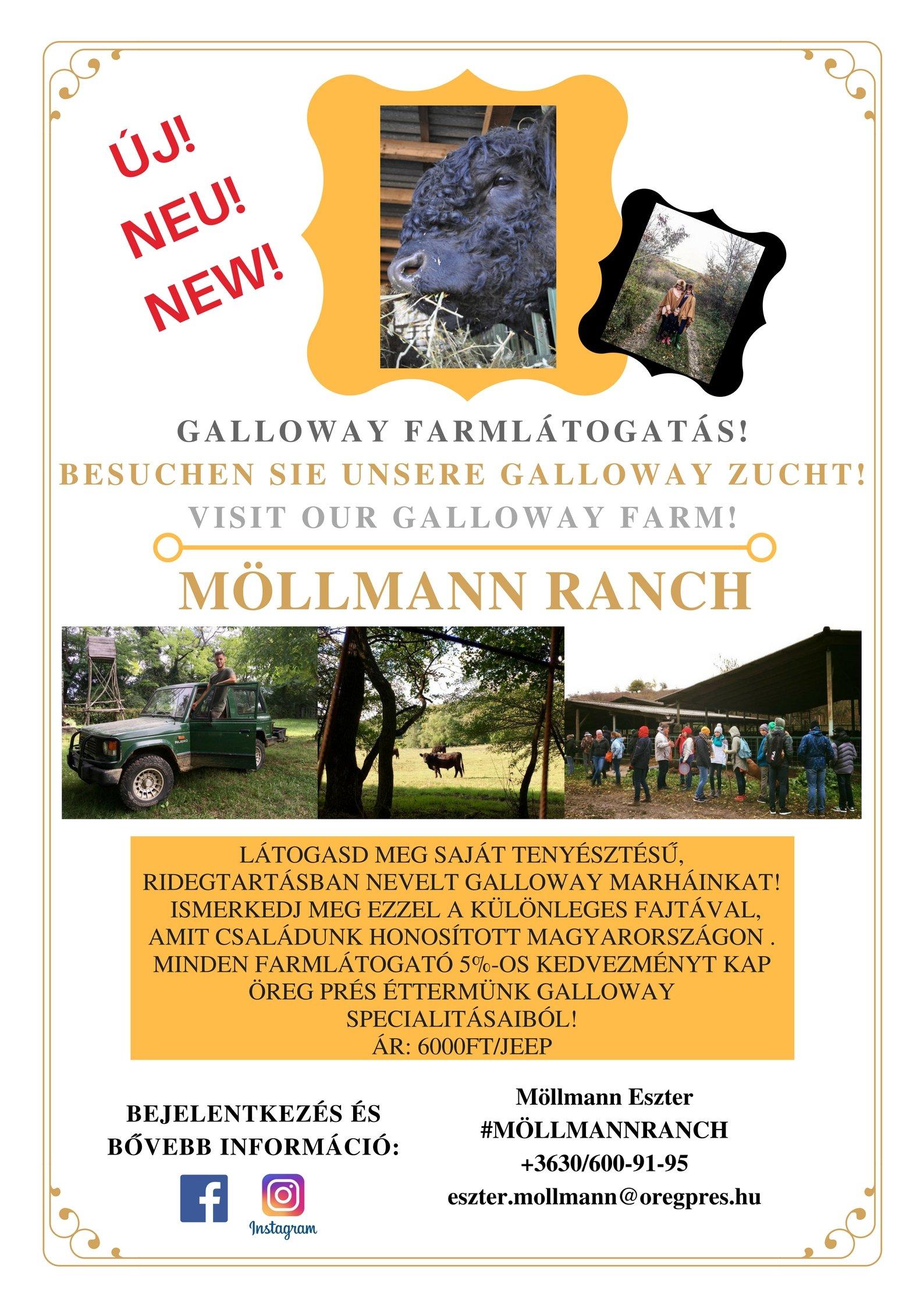 gallowayplakat