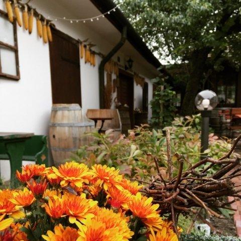 """""""Tausendgut"""" Herbsttage im Gasthof"""