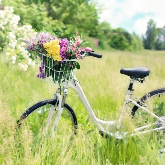 Tavaszi Pihenés
