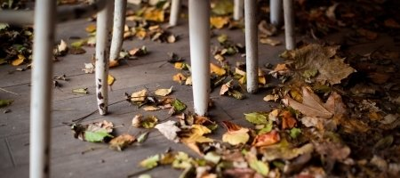 Hello ősz! (hosszú hétvége és őszi szünet)