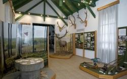 Erdészeti-, faipari- és vasúttörténeti kiállítás