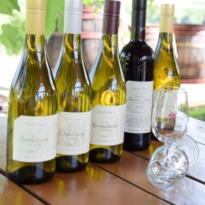 L16 Restaurant wine offers - Tuboly Winery
