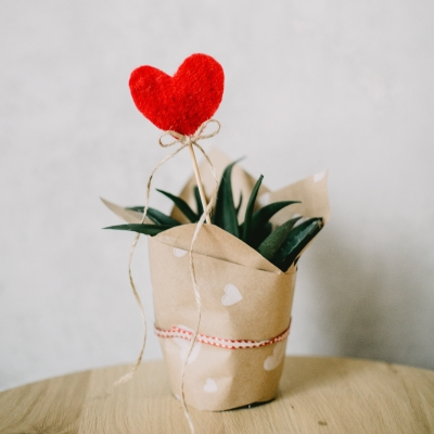 Valentin napi zakatolás