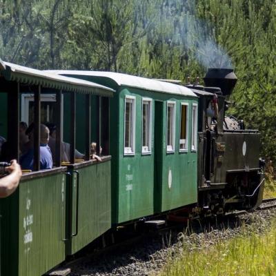 Szezonnyitás az erdei vasúttal