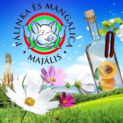 IX. Pálinka és Mangalica Majális