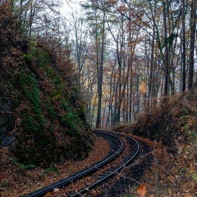 Schmalspurbahn Tag in Lenti