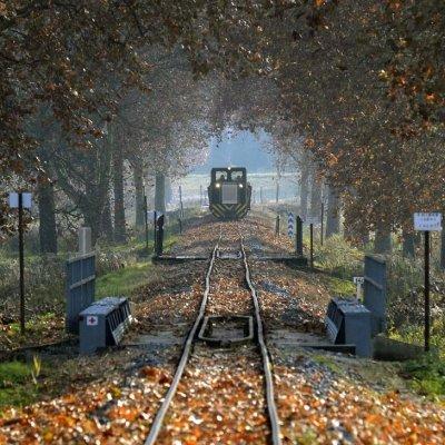 Szezonzáró vonatozás