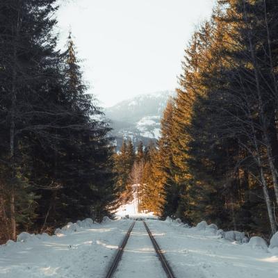 Évzáró utazás