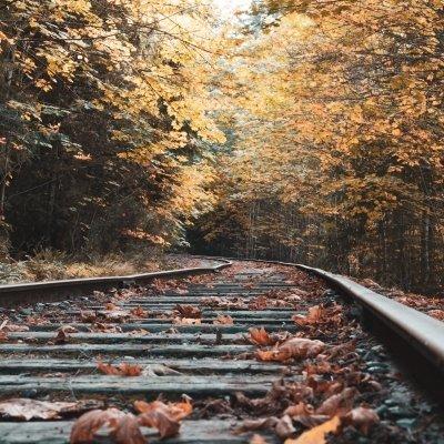 Saisonschließender Schmalpurbahnfahrt
