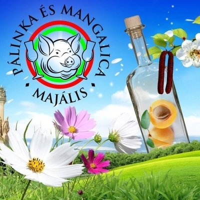 Palinka and Mangalica Festival