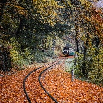World Tourism Day with State Forest Railroad of Csömödér