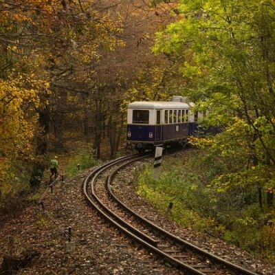 Autumn Greeting with the forest railway