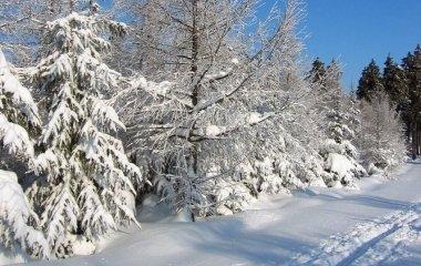 Nyújtózkodós téli pihenés