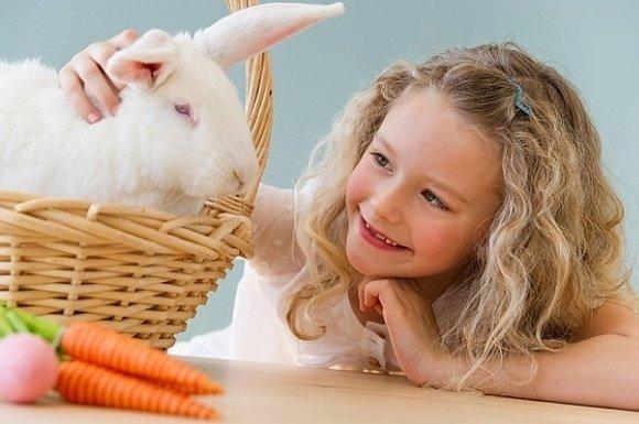 Húsvéti wellness ajánlat