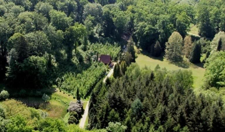Csácsbozsoki Arborétum