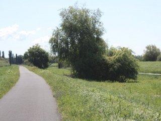 Útvonal: 27. Kis- Balaton kerékpárút