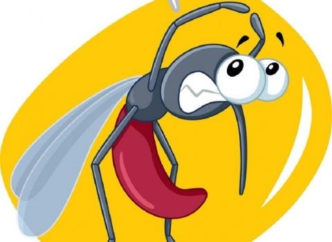 Közérdekű felhívás - Szúnyoggyérítés Zalakaroson!
