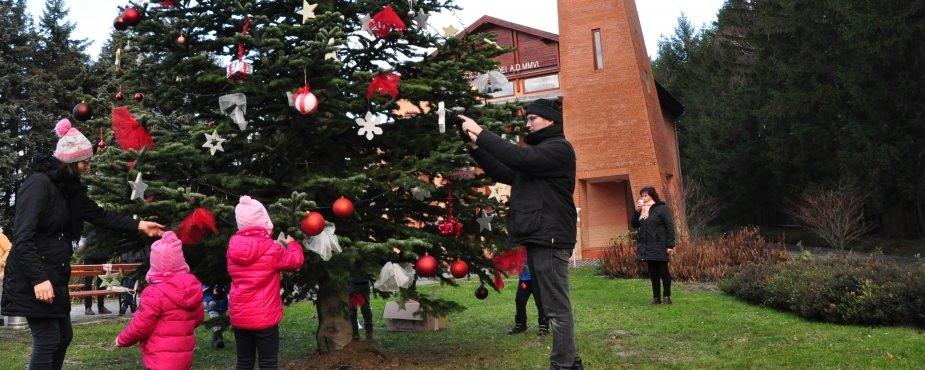 A város karácsonyfáját díszítették