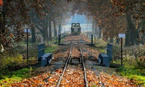 Őszi utazás a csömödéri kisvasúttal