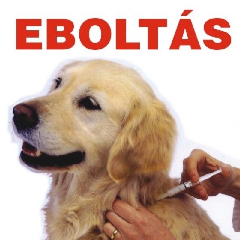 Figyelem! Eboltás