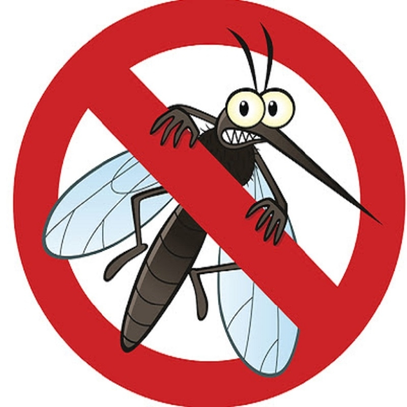 Szúnyoggyérítés - 2021.07.13.